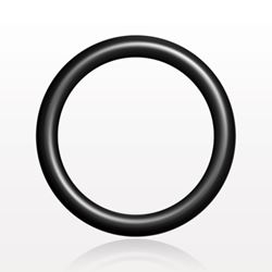 O-Ring, Black, AS-013 - 13037